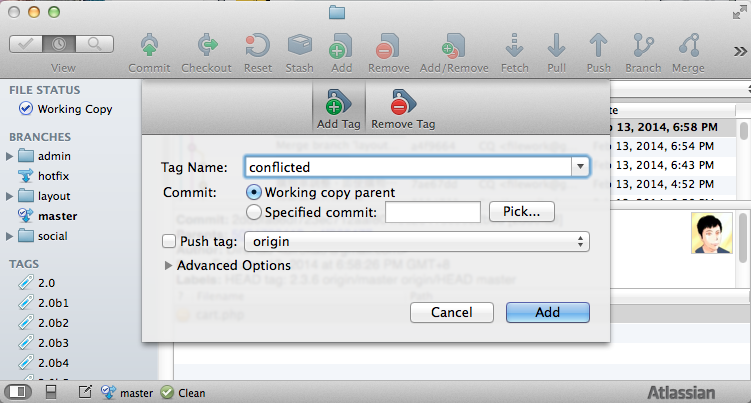 sourcetree_tag